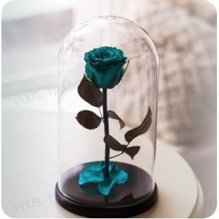 Бирюзовая Premium роза