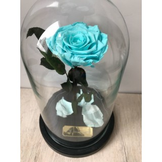Голубая Extra роза