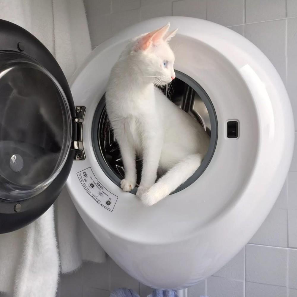 Настенная стиральная машина с функцией дезинфекции и стерилизации вещей Xiaomi MiniJ Sterilization Washing Machine Version Pro 2.5 кг (G1-MZB)